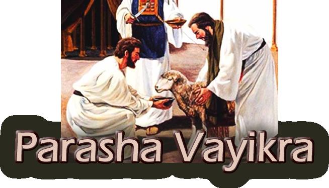 Parasha Vayikra